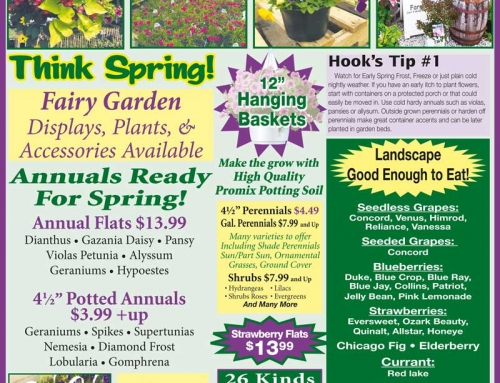 Weekly Specials April 7-15, 2017