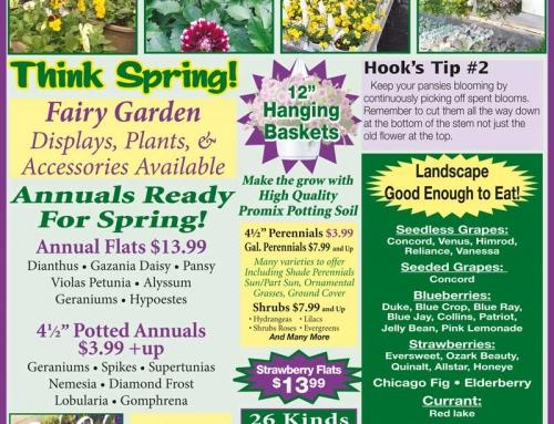 Weekly Specials April 16-22, 2017
