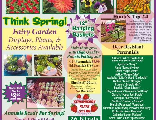Weekly Specials April 30 – May 6, 2017