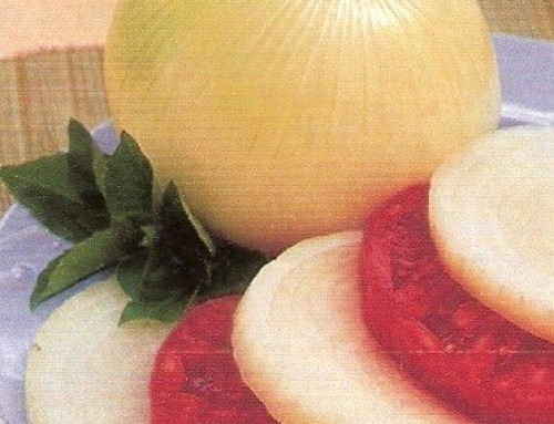 Growing Onions in Small Spaces