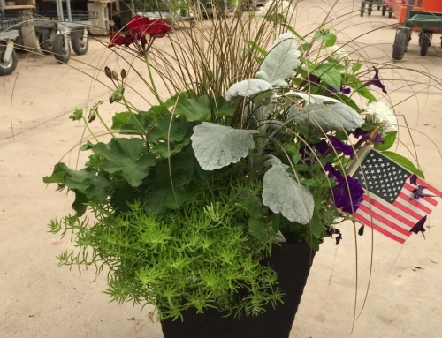 Patriotic Planters for the Fourth of July